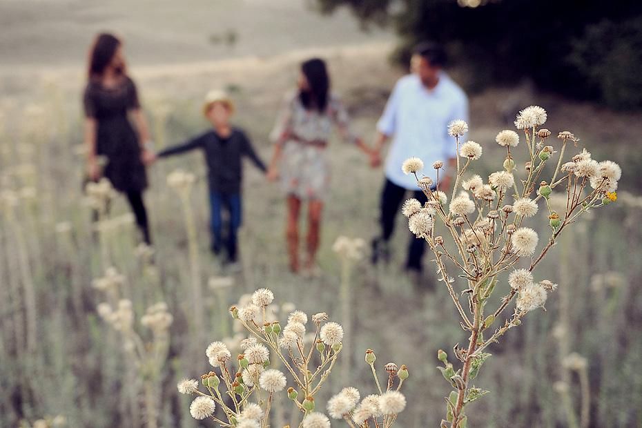 family-field
