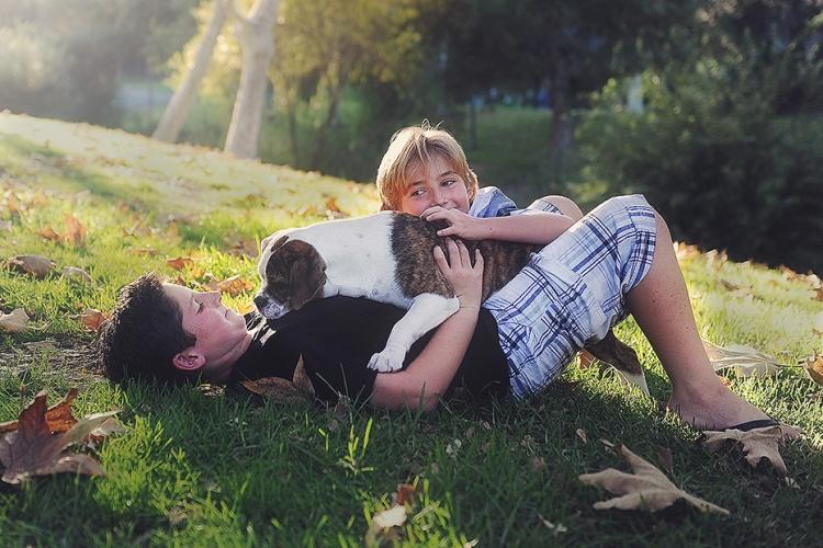 puppy-pics2