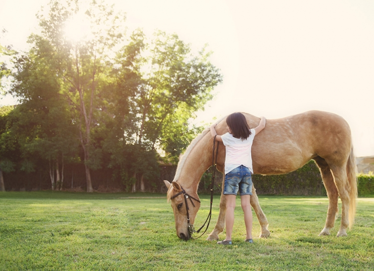 Children and horses 5